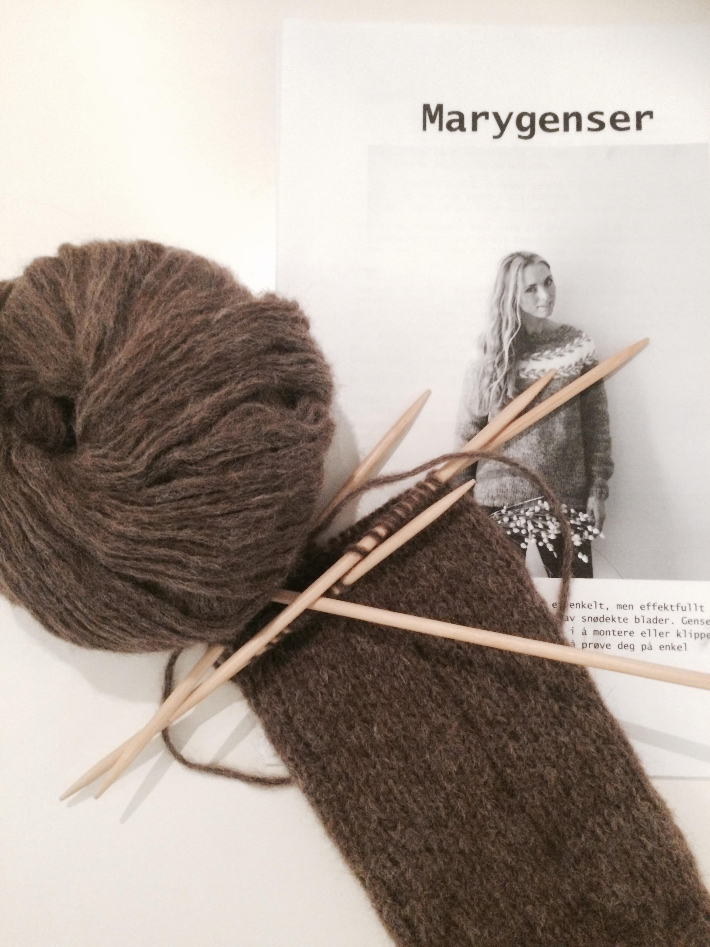 Brun Marygenser Lissas strikkeblogg